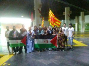Brigadistas Aragón Sahara